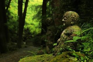仏教イメージ.jpg