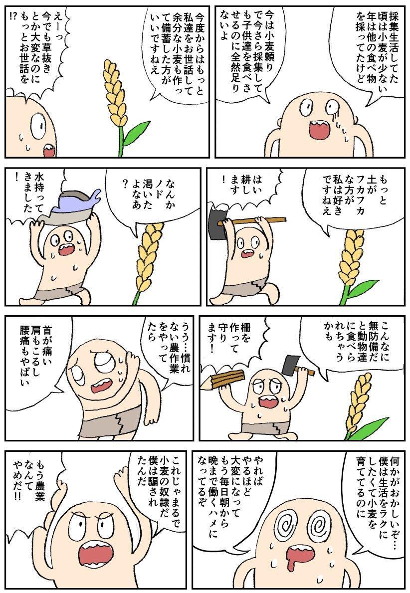 小麦に騙された1.jpg